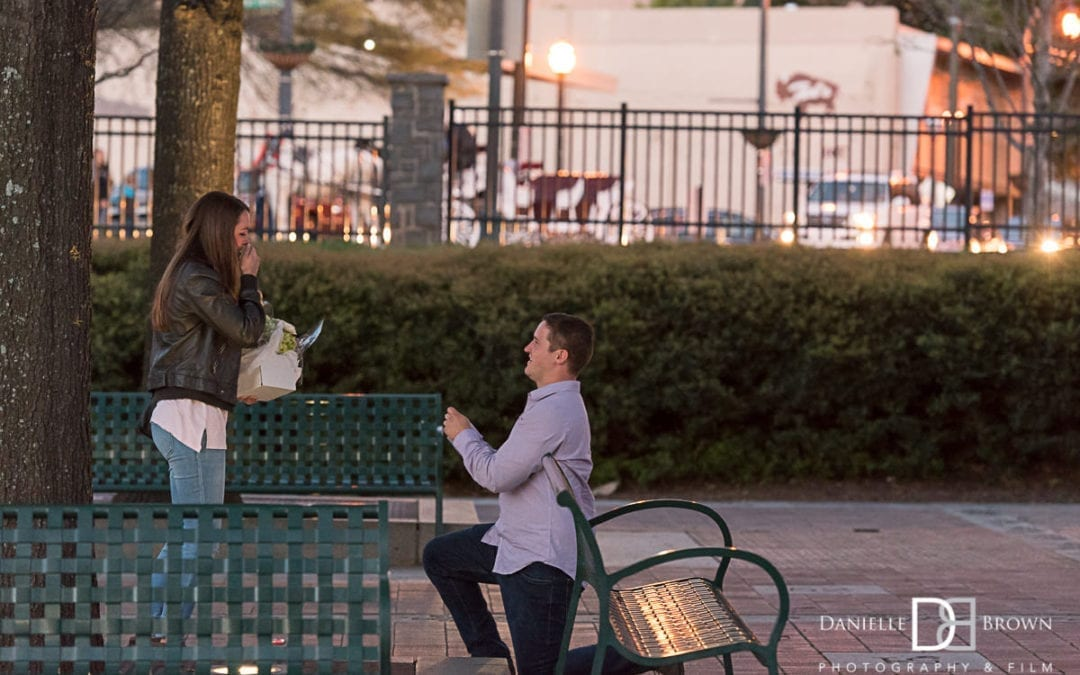 Centennial Park Surprise Proposal
