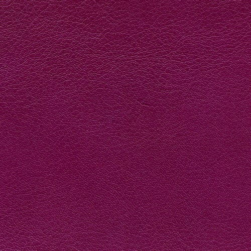 Purple Grape Genuine Leather Album Cover