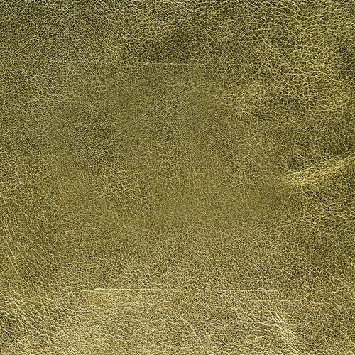 Summer Gold Genuine Leather Album Cover